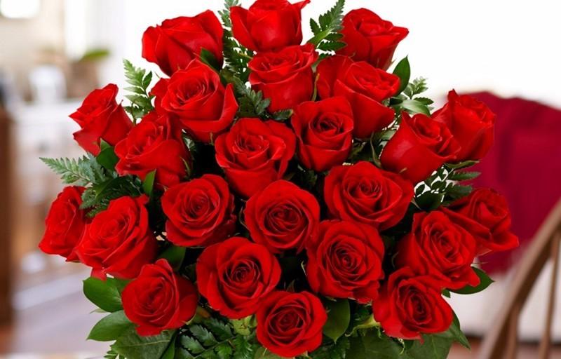two-dozen-roses